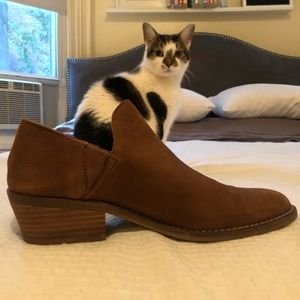 Lucky brand booties (Frank the cat not included)